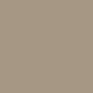 Warm-grey-NCS-S5010-Y10R