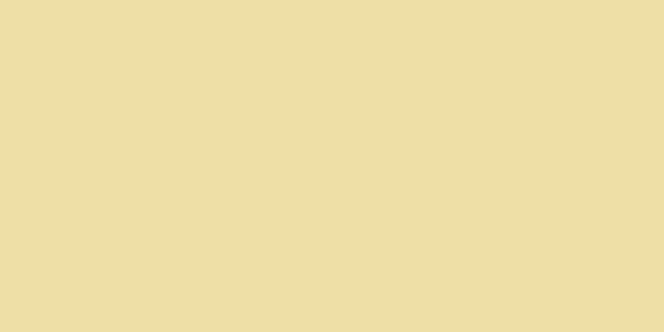 L4-viesiai-geltona