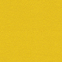 30319W-Xtreme-CS-Gelb