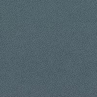 30318-Carissima-Grau