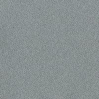 26270-Cosma-Grau
