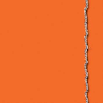 IDO_Leder_CA-orange